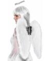 Engelen vleugels met halo