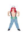 Look-a-like Obelix kostuum voor kinderen