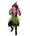 Carnaval heksen jurkje groen/zwart voor meisjes